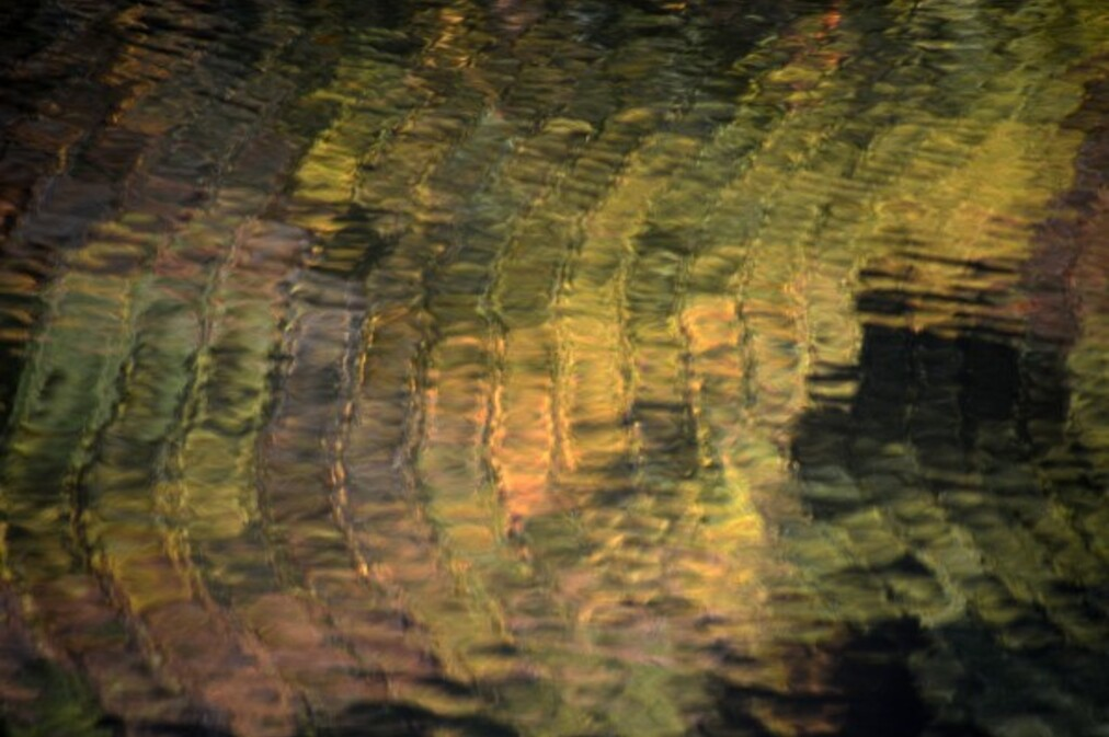 Reflets-4-3915.jpg