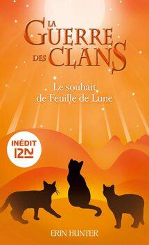 Les livres numériques arrivent en français !