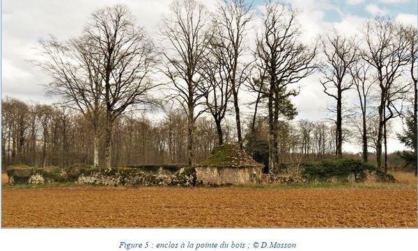 """""""Les cabanes à moutons de Coulmier le Sec"""", un notule d'Histoire de Dominique Masson...."""