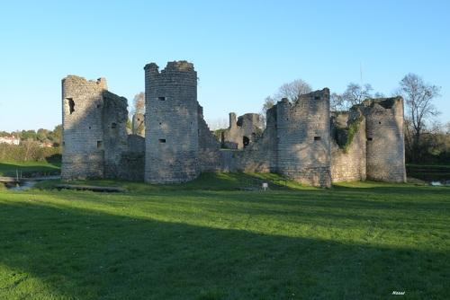 Chateau de Commequiers .