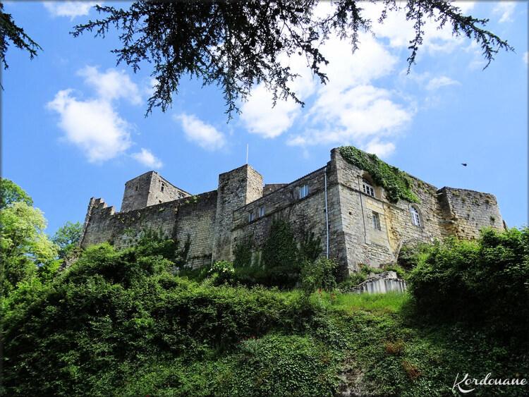 Photo de la visite de la forteresse médiévale de Langoiran