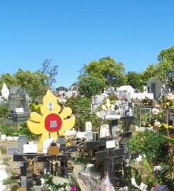 Ma balade du jour, entre cimetière, houle et souffleur !!!