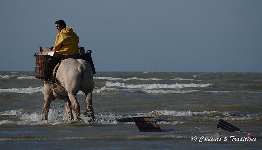 La pêche à cheval