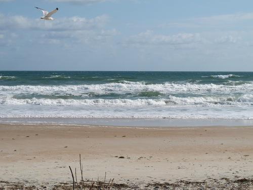 La côte Atlantique et Sainte Augustine