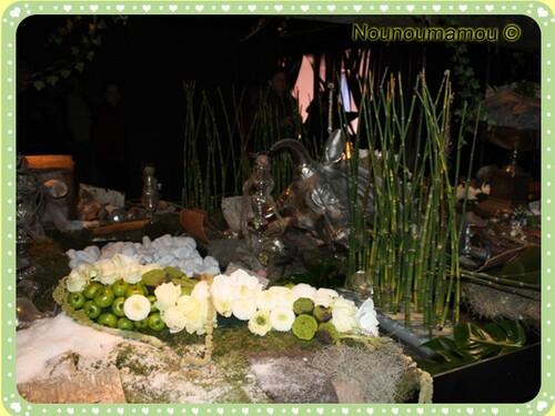 Folies'Flore 2011 à Mluhouse