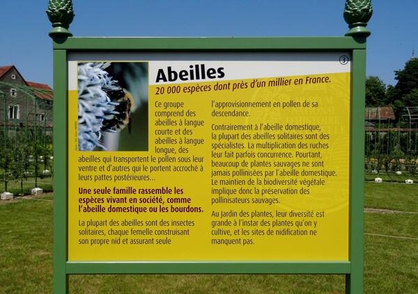 De magnifiques panneaux pédagogiques, prêtés par le Jardin des Plantes de Paris, ont décoré le jardin du château de Montigny sur Aube, durant tout l'été