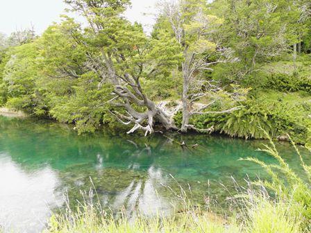 La région des lacs