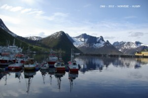 Port Husøy