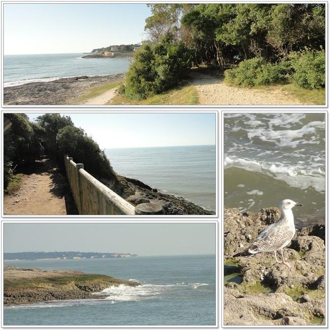 Sentier littoral de Vaux sur Mer