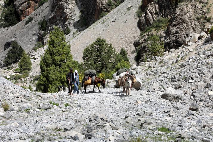 Descente vers Artouch, Tadjikistan