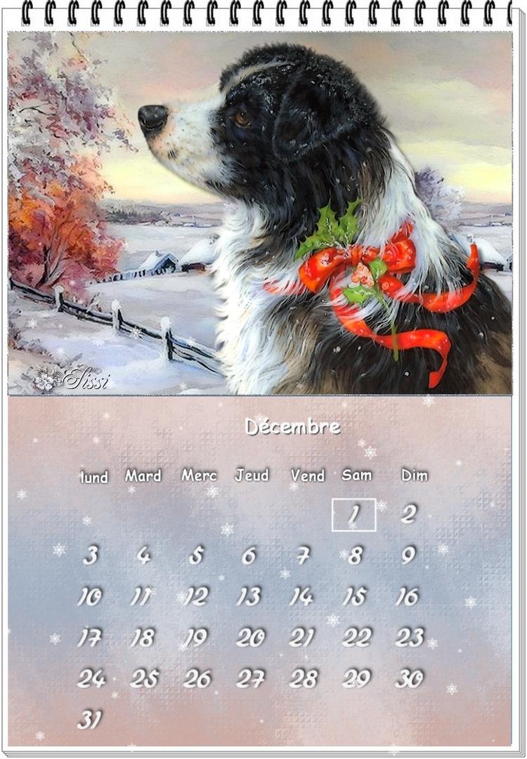 * Bonjour Décembre *