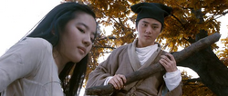 A Chinese Fairy Tale (C-Film)