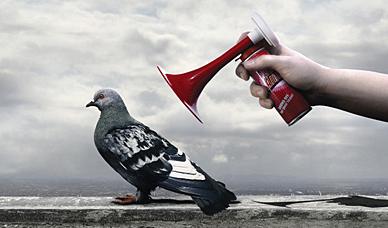 J'aime beaucoup Samsung mais pas quand elle me prend pour un pigeon…