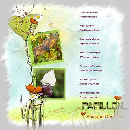 papillonphilippe