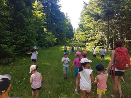 PSMS - GSCP - Sortie de fin d'année ... balade en forêt et au frais !!!