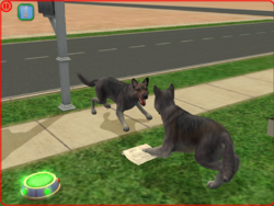 """Sims 2 family Larans Dogs """"Diversification phase 2"""""""