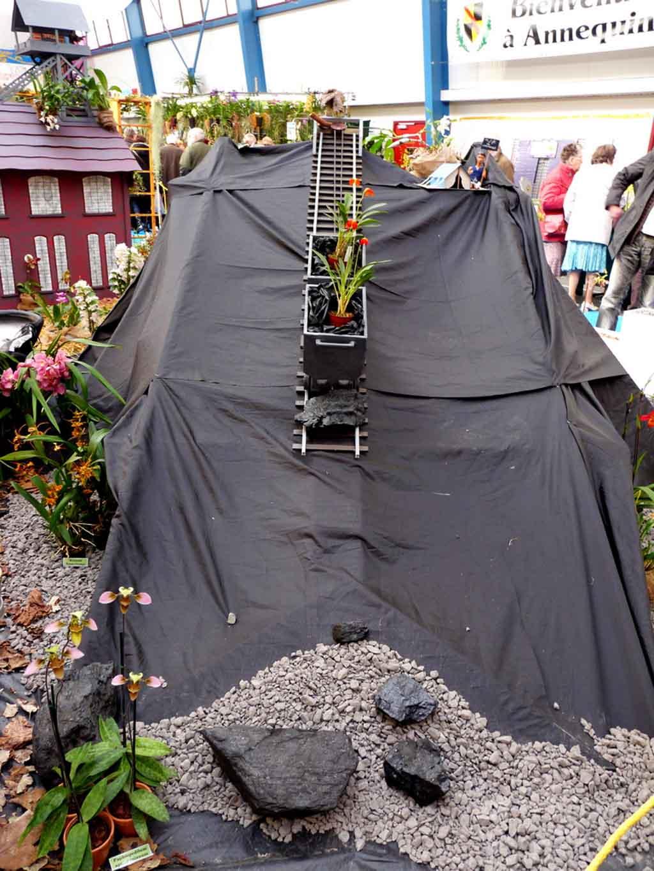 Fin de l'exposition d'orchidées à Annequin