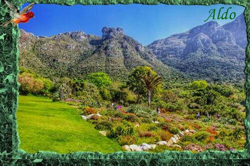 PPS Kirstenbosch