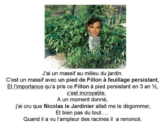 politique_et_jardinage_002