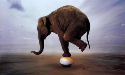 Une question d'équilibre