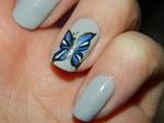 Nail art papillon bleu