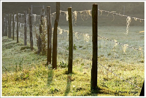 """""""Arrière-Saison"""" dans le Châtillonnais, de très belles photos de Jean-Pierre Gurga..."""