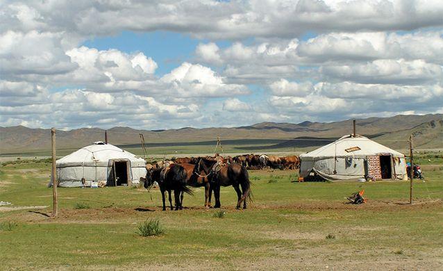 Mongolië Reisverslag | Yvonne van der Laan - Blog