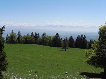 Vers les Alpes Fribourgeoises et le Chablais