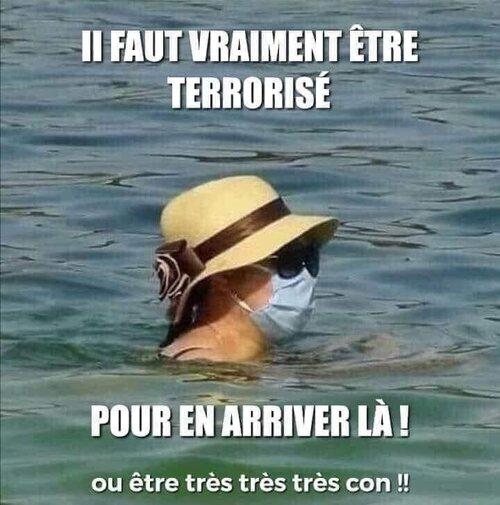 La France qui marche sur la tête . artc32