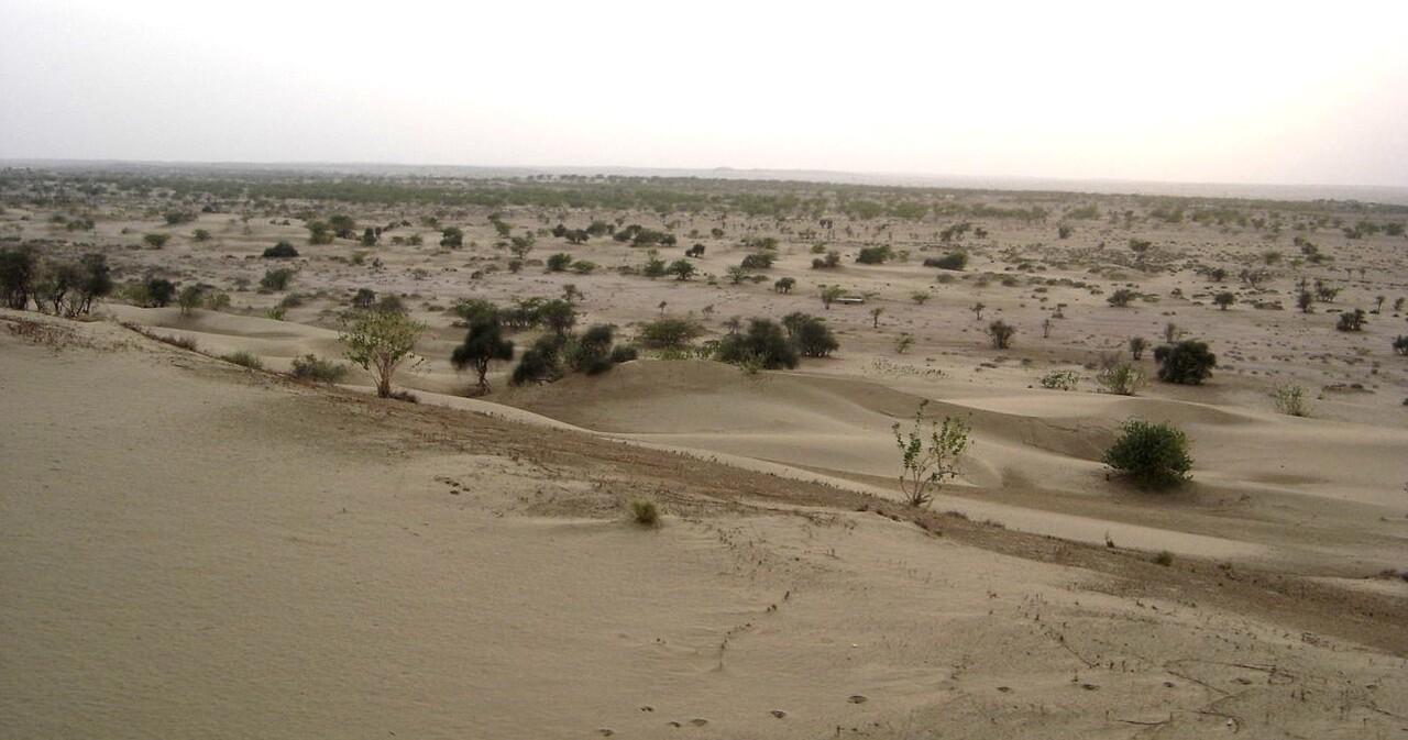 Rajasthan 2 / Un état plutôt sec