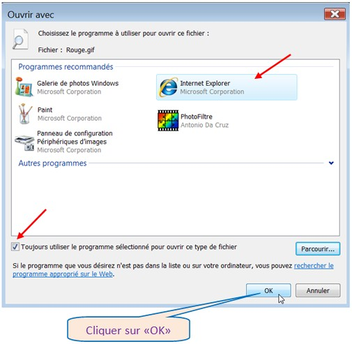 VISTA – VISUALISER UN GIF ANIME