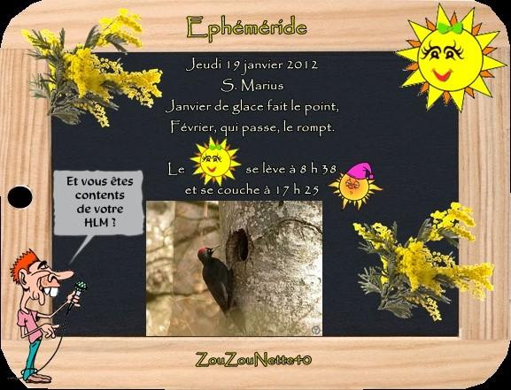 JEUDI-19-JANVIER-2012-.jpg