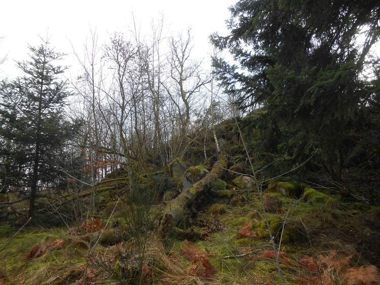 Vosges- Le saut du bouchot/le Mettey