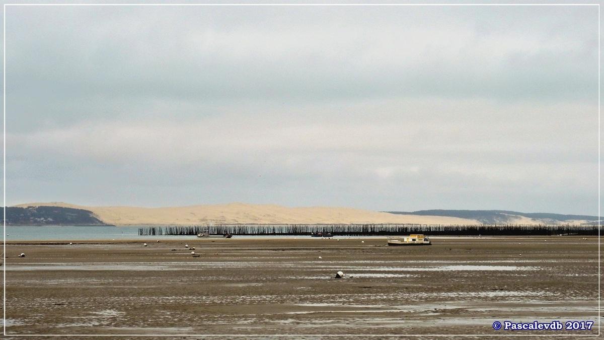 Traversée du Bassin entre Arcachon et le Cap Ferret - 5/14