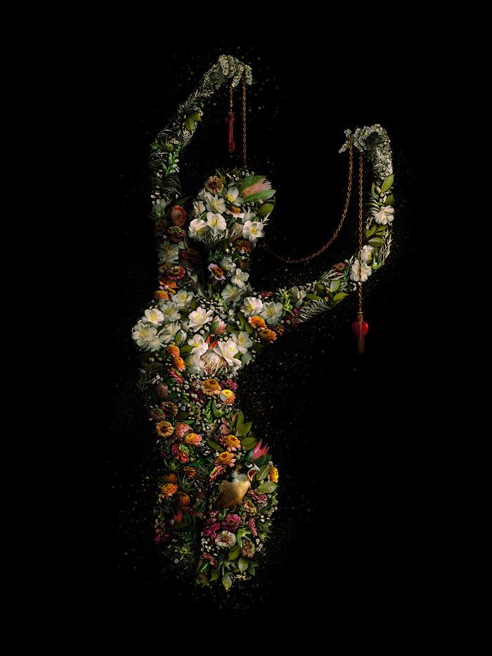 Les Collages botaniques de Meggan Joy