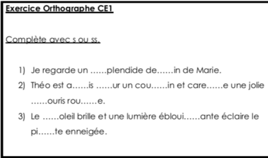 Exercices orthographe CE1 : s ou ss.