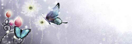 Mon design 1 - papillons  -