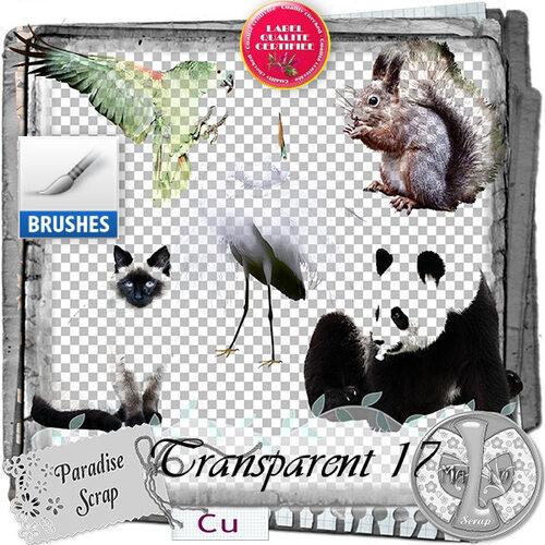 Transparent 3