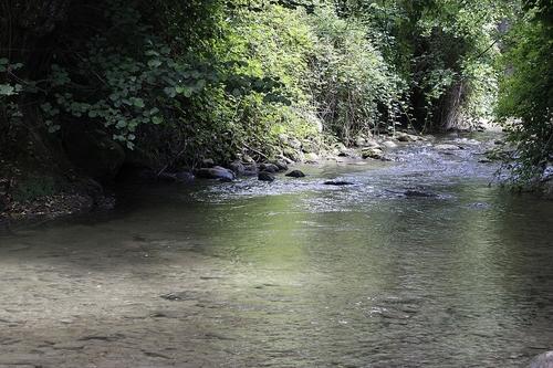 Le Flon - Rivière de l'avant pays savoyard - 11 juillet 2017