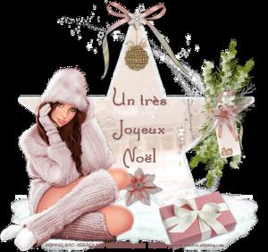 Noël & Nouvel An - Mes Etoiles à Souhaits Set #1