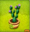 pot de cactus à feuilles fleur-lilas