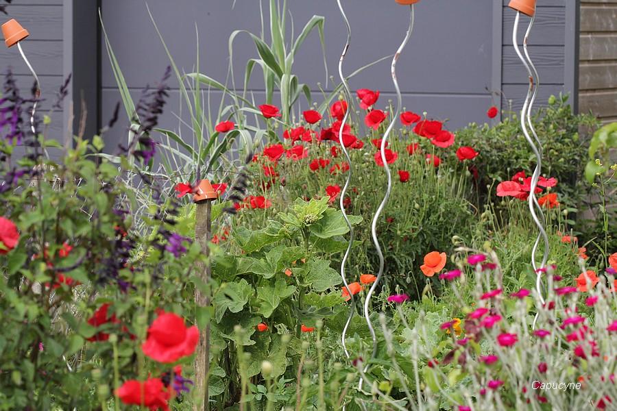 Scènes de jardin (2)