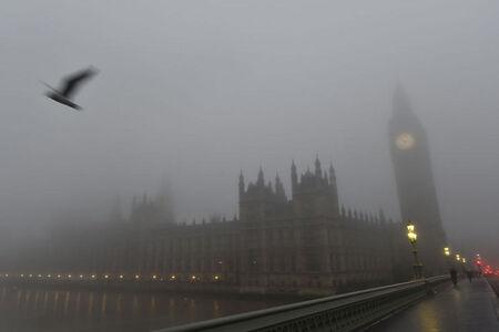 Le coucou du vendredi, haïku, senryû, le brouillard...