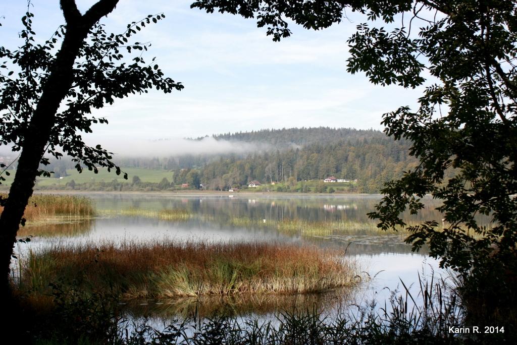Fenêtre sur lac