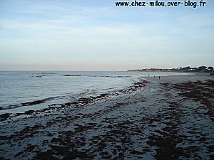 Noirmoutier01