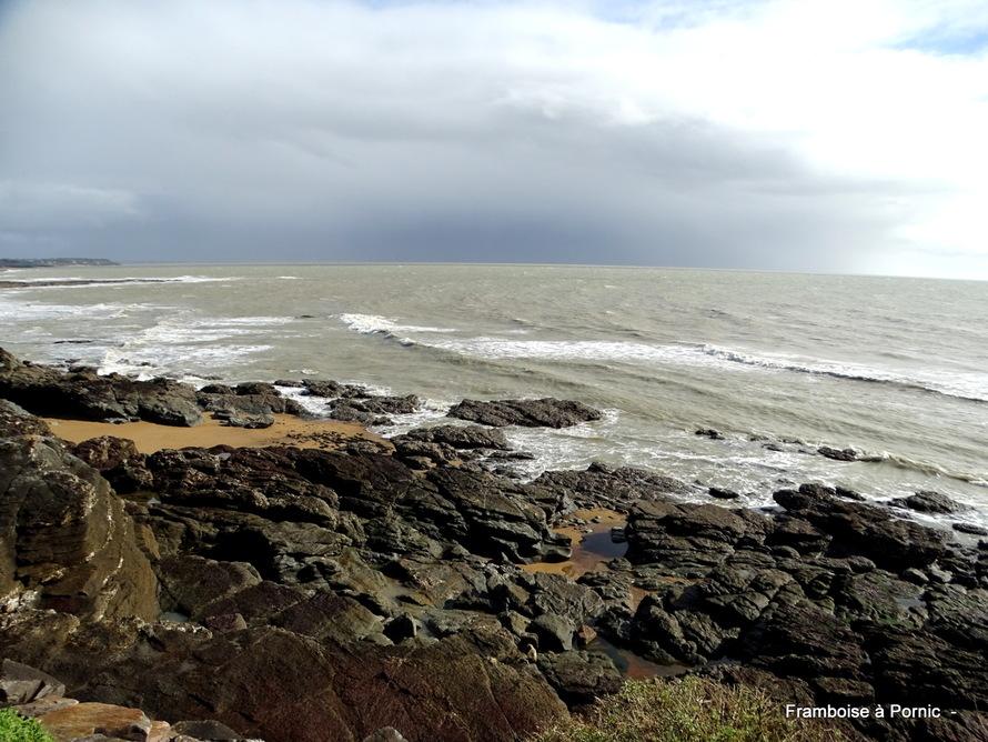 Préfailles,  sentier du littoral - 2020