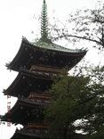 Ma première semaine a Tokyo
