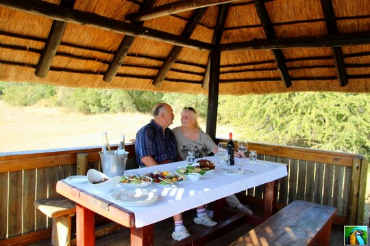 Afrique du Sud : Lunch dans la brousse