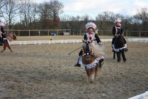 Les Miaos (carrousel shetland 2012) concours de Palluau