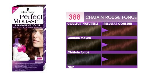 ღ Revue | Coloration Perfect Mousse